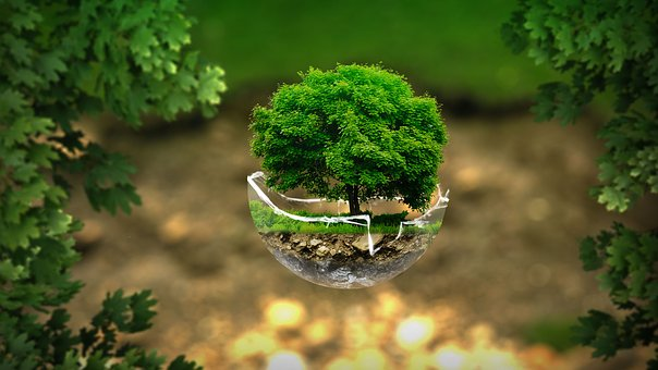 environment-2196690__340
